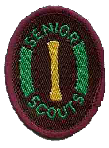 The Senior Scout Instructor Badge